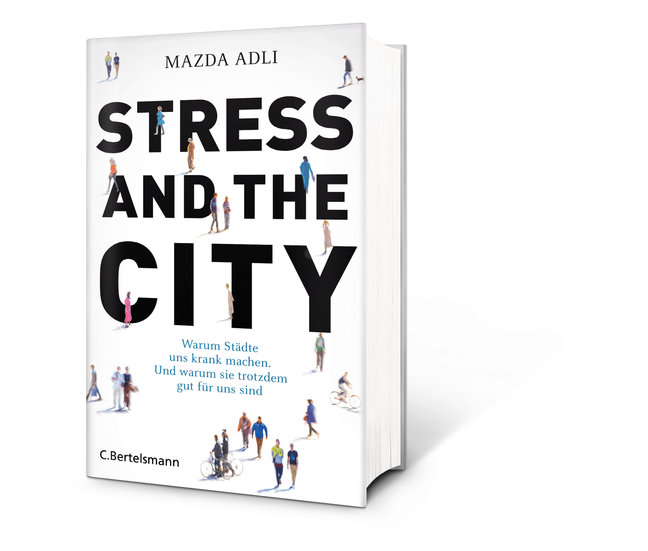 Stress and the City Buch